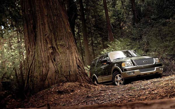 Фото Ford Expedition  (2003-2006)